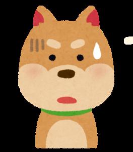 少し焦っている犬