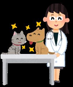 女性の獣医
