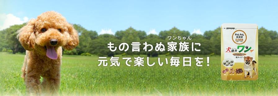 犬康食ワンパッケージ202008_2