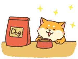 ドッグフードを喜ぶ犬