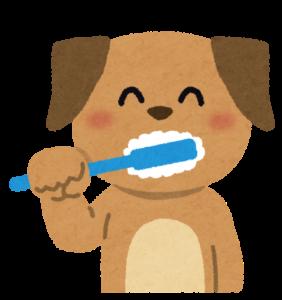 歯磨きをする犬