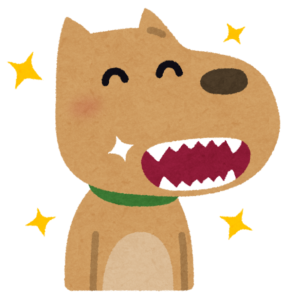 奇麗な歯の犬