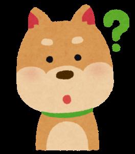 わからない犬