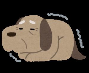 シニア犬イラスト