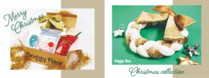 ドギーボックス2019‗12月号中大型犬全体とおもちゃ