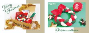 ドギーボックス2019‗12月号超小型犬全体とおもちゃ