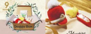 ドギーボックス2019‗9月号小型犬用全体とおもちゃ
