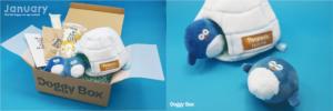 ドギーボックス2020‗01月号超小型犬全体とおもちゃ