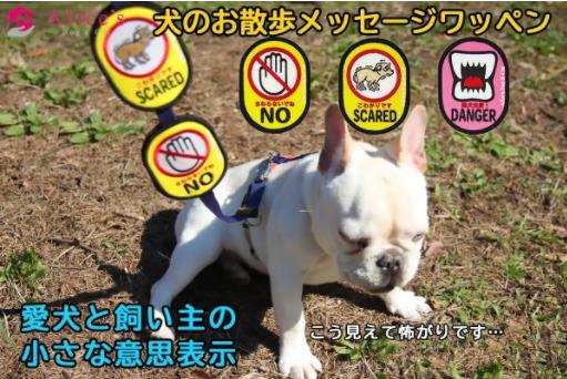alice犬のお散歩メッセージワッペン写真